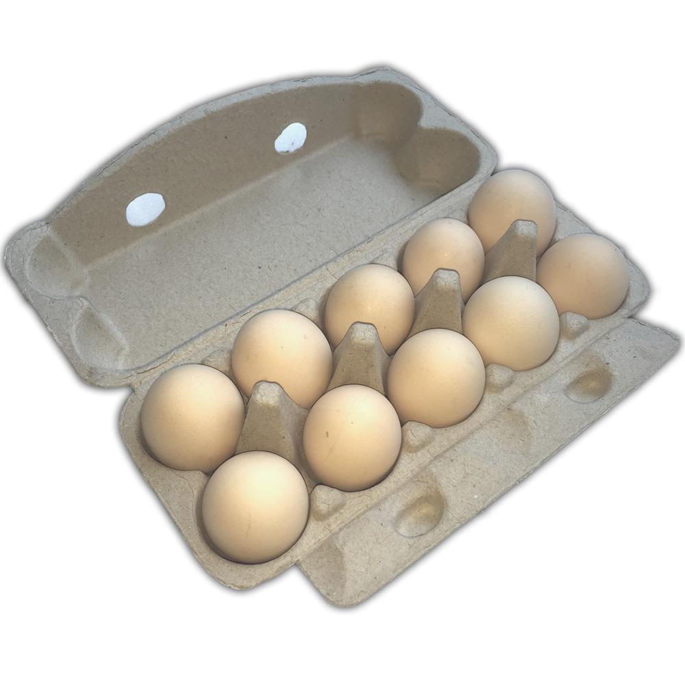 环保高档创意鸡蛋蛋托 森宝纸托防震订做